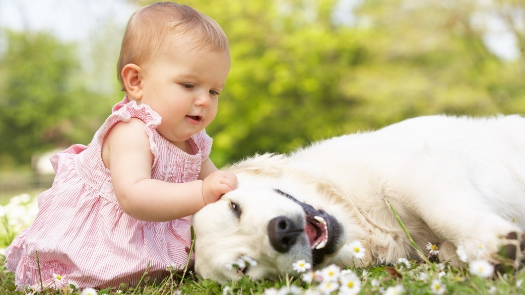 Header_baby-and-dog-playing