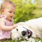 Thumb_baby-and-dog-playing
