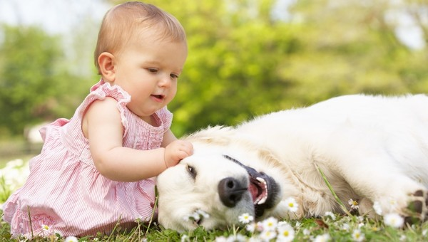 Tile_baby-and-dog-playing
